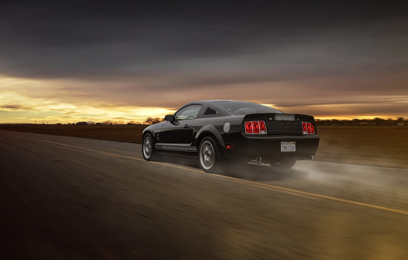 Photo wallpaper Mustang, Ford, Muscle, Car, Speed, Grey, Road, Collection, Aristo, Rear, GT 350
