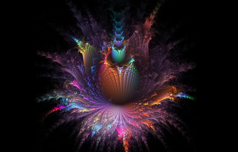 Photo wallpaper color, syle