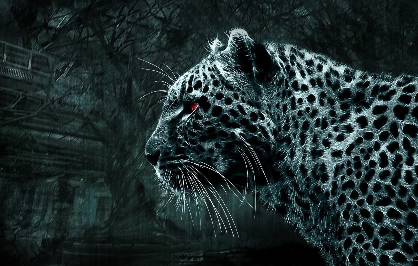 Photo wallpaper leopard, Picture, red eyes, wild cat, looks, black and white picture