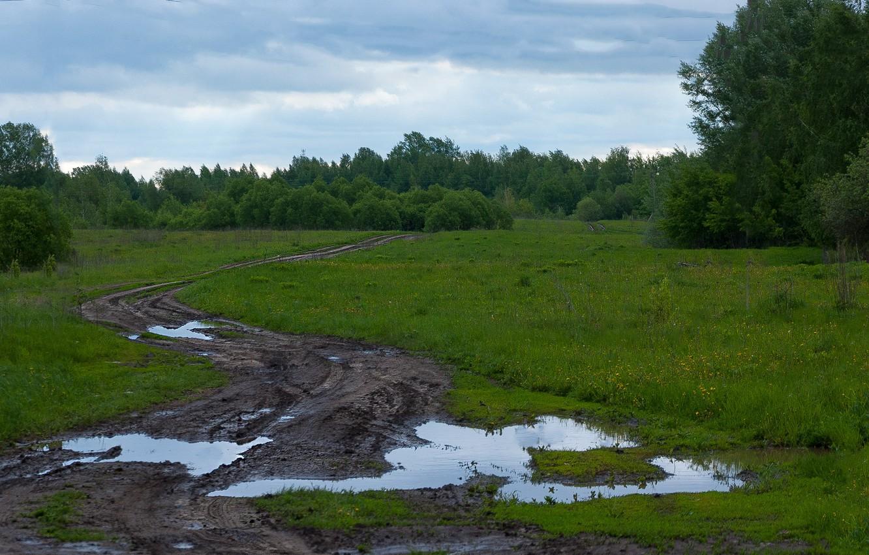 Photo wallpaper road, overcast, morning, may