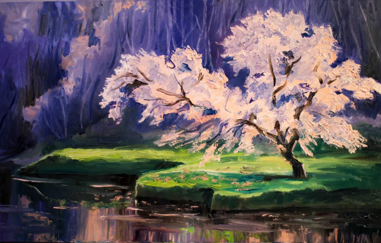 Photo wallpaper Dikareva, Cherry blossoms, Luba Dicker