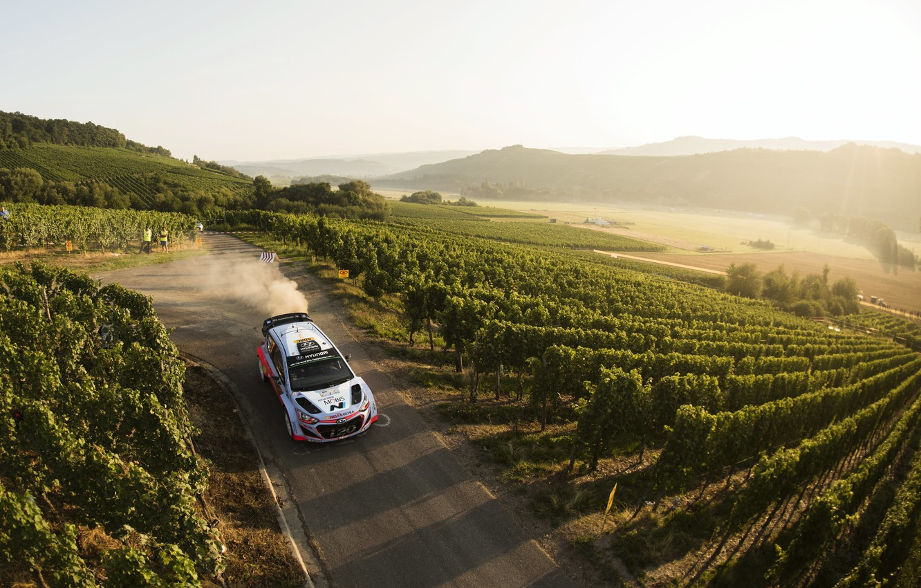 Photo wallpaper Dust, Hyundai, Germany, WRC, Rally, The front, i20, The vineyards
