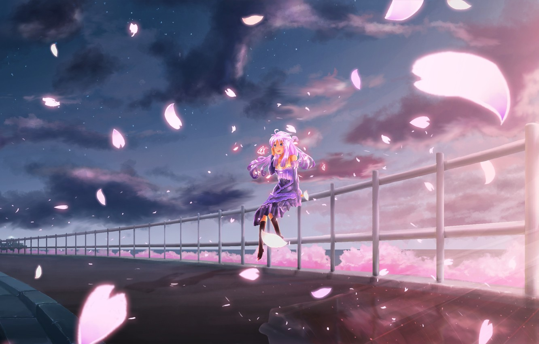 Wallpaper The Sky Girl Clouds Joy Sunset Anime Petals Sakura Art Images For Desktop Section Prochee Download