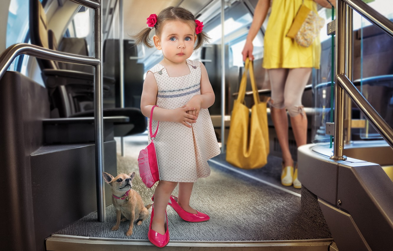 Photo wallpaper dog, girl, bus