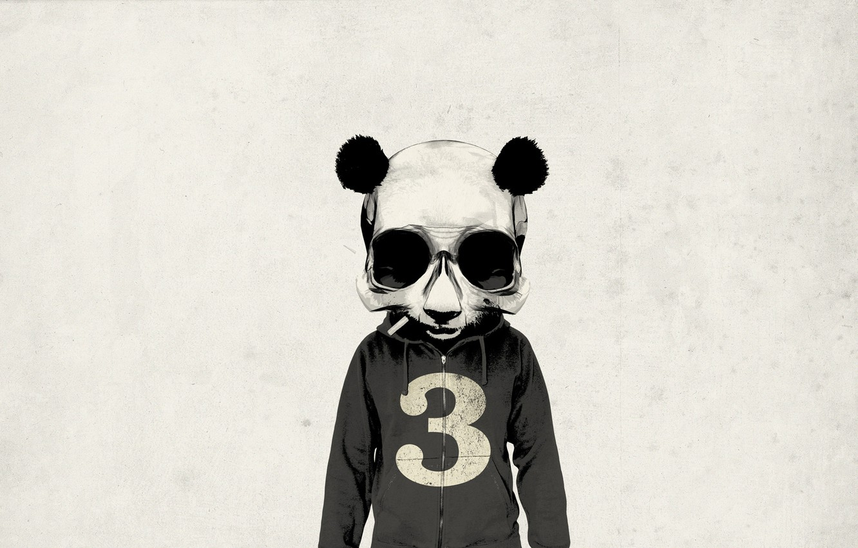 Photo wallpaper look, void, background, wall, animal, body, people, skull, minimalism, texture, head, art, cigarette, Panda, Rhys …