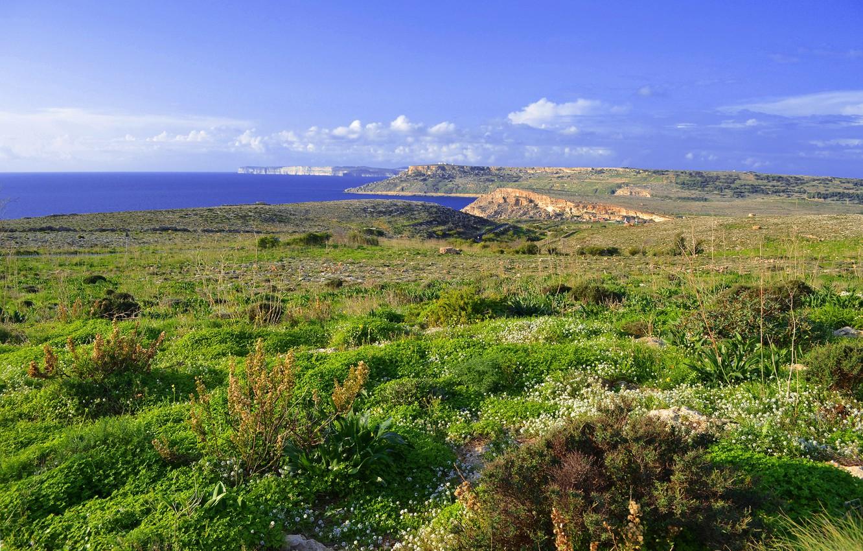 Photo wallpaper sea, the sky, grass, clouds, island, meadow, Malta, cvet