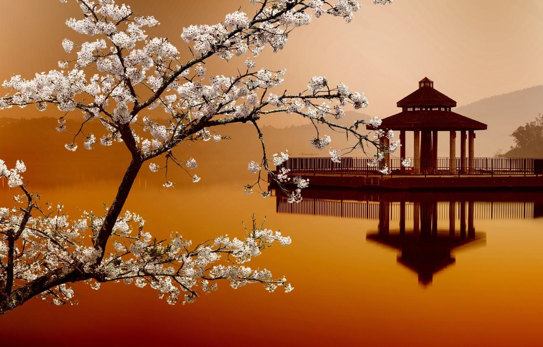 Photo wallpaper Sakura, Sakura, Eastern landscapes, house on the water, house on the water, Eastern landscapes