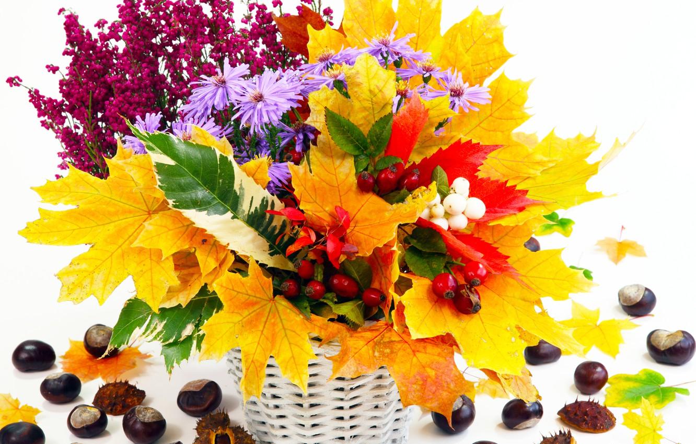 Photo wallpaper autumn, leaves, flowers, still life, chestnuts