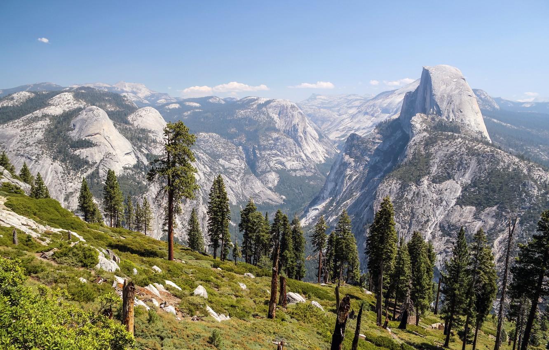 Wallpaper trees, mountains, rocks
