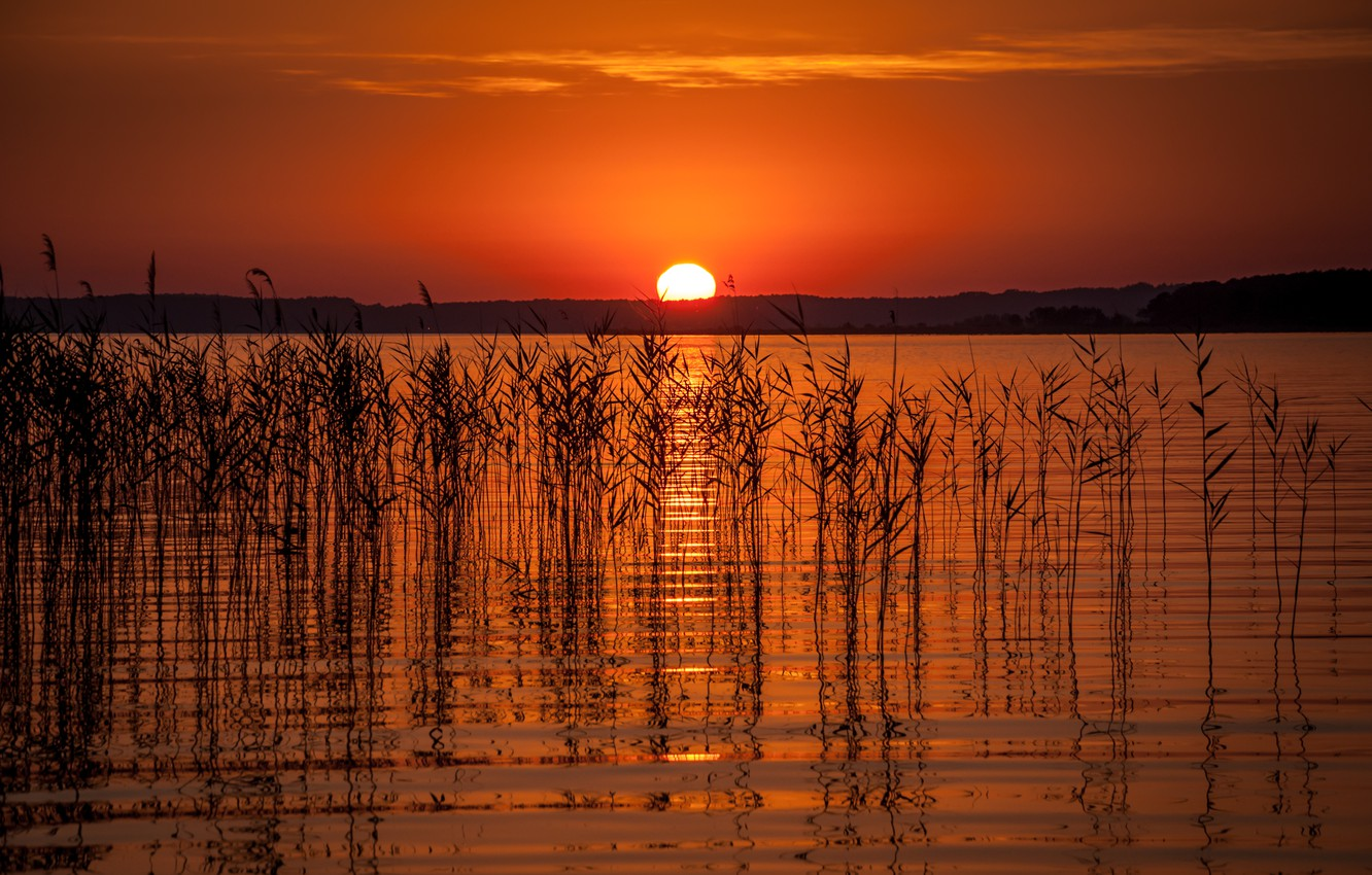 Photo wallpaper summer, the sky, the sun, sunset, lake, silhouettes