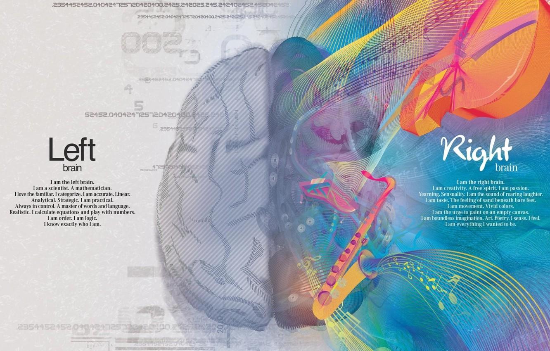 Photo wallpaper creative, paint, science, brain, creativity, art, hemisphere, math, logic, right, left, gyrus, gray matter, thinking, …