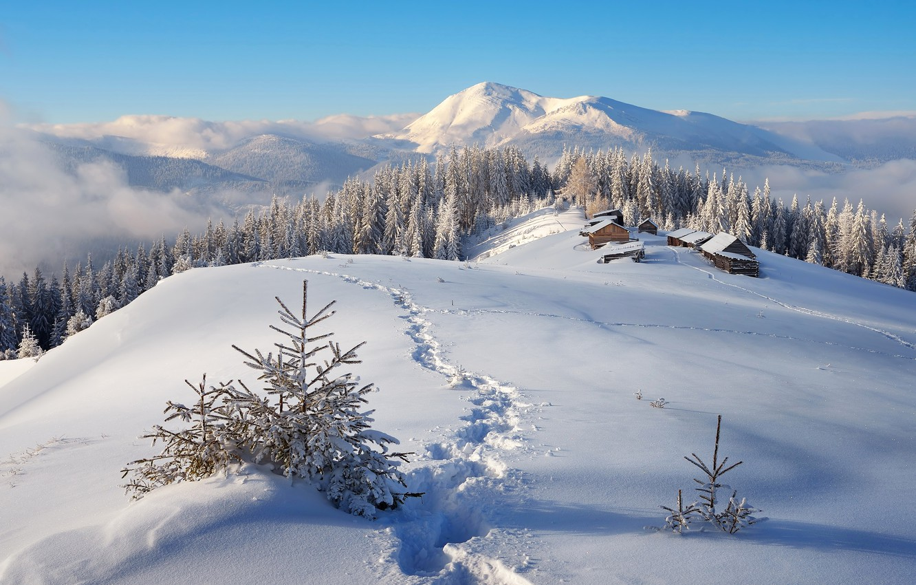 Photo wallpaper Nature, Home, Winter, Mountains, Snow, Forest, Landscape