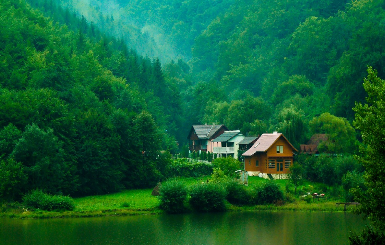 Photo wallpaper greens, forest, trees, river, houses, the bushes