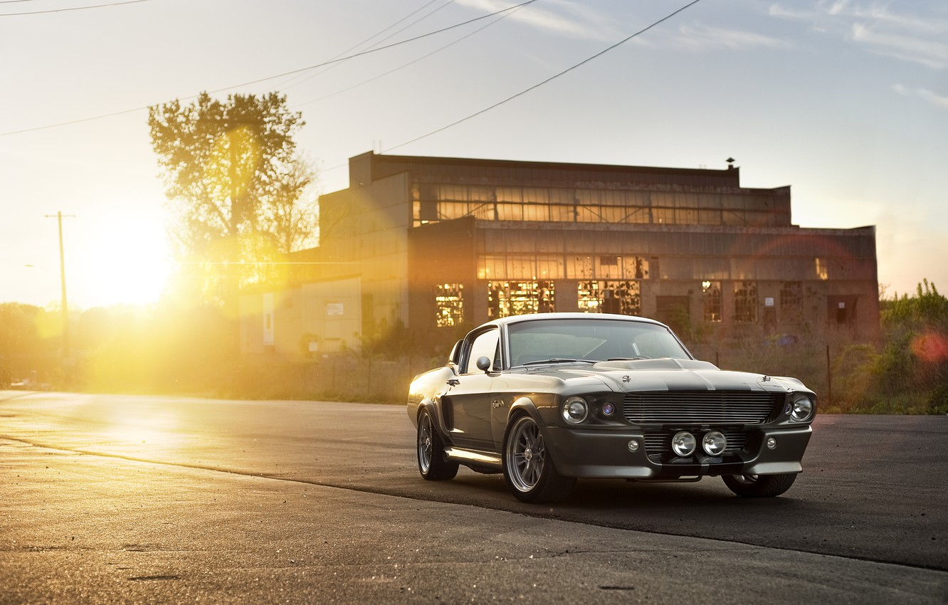 Photo wallpaper the sun, the building, Ford, Shelby, silver, Eleanor, GT 500, muscle car, Ford, Blik, Shelby, …