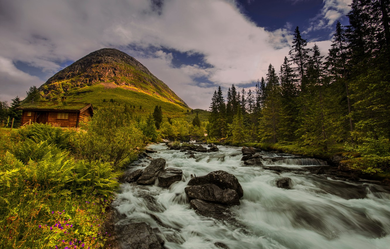 Photo wallpaper trees, river, hill, Norway, hut, Norway
