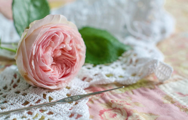 Photo wallpaper flower, style, rose, Bud, hook, knitting