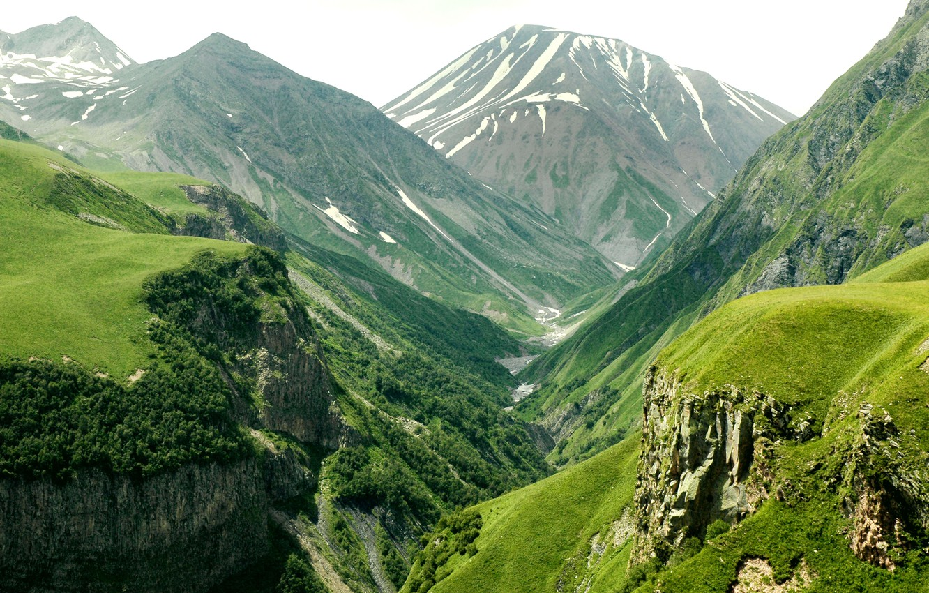 Photo wallpaper forest, trees, mountains, height, valley, slope, space, valley, Mountains