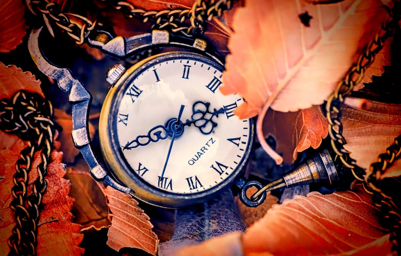 Photo wallpaper autumn, leaves, arrows, watch, dial, autumn, leaves, hands, clock, dial