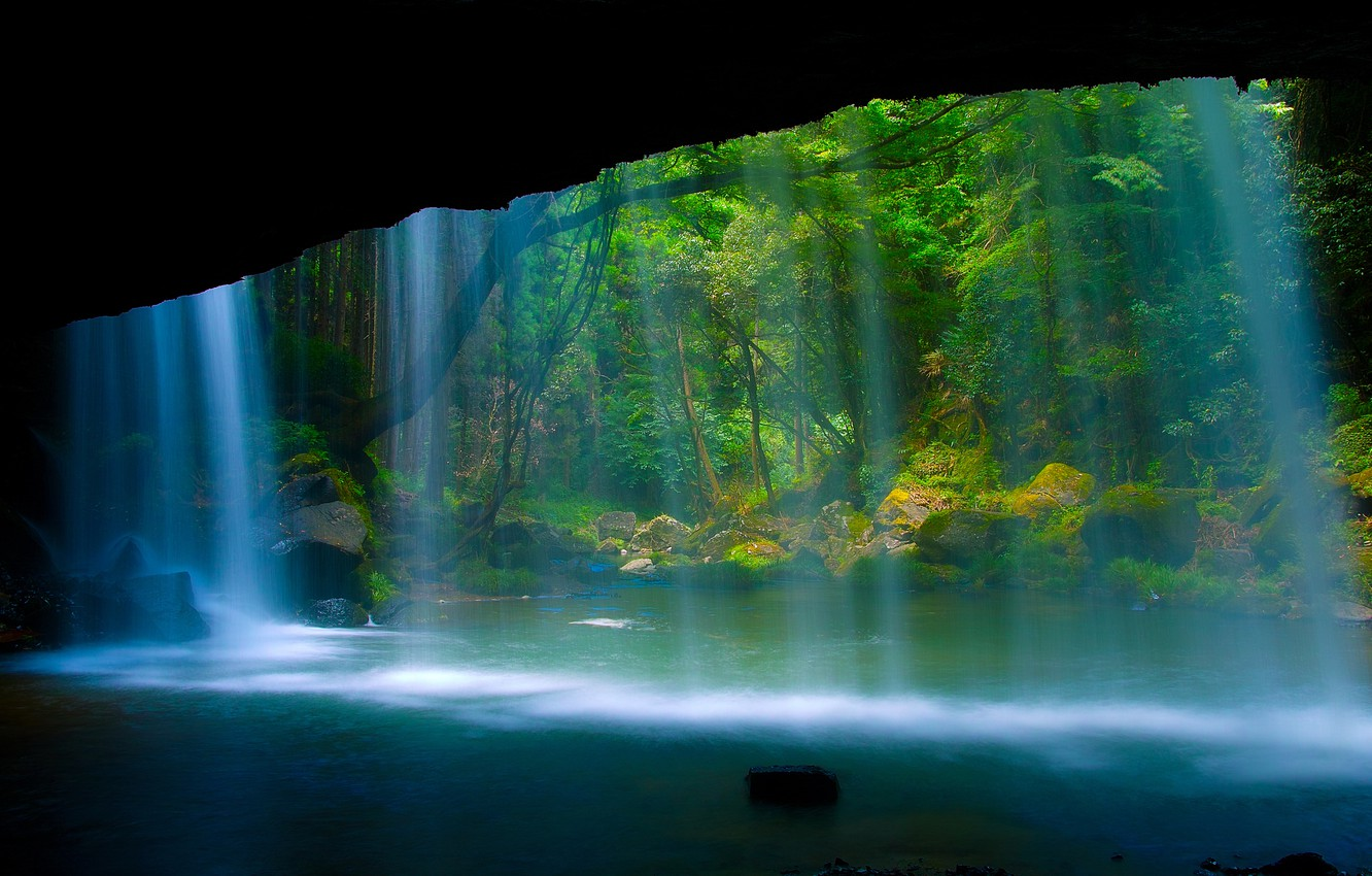 Photo wallpaper forest, nature, rock, river, waterfall