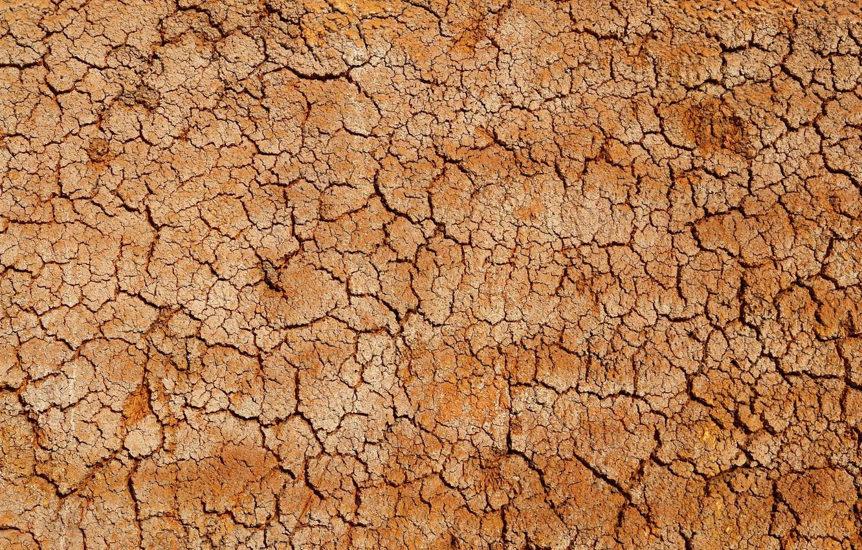 Photo wallpaper desert, texture, crack, cork, clay