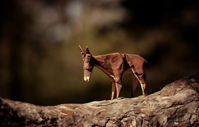 Photo wallpaper branch, brown, origami, donkey, journey donkey, brown donkey