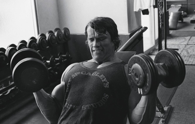 Photo wallpaper sport, Arnold Schwarzenegger, Arnold Schwarzenegger, Bodybuilding