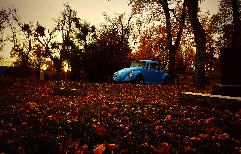 Photo wallpaper autumn, leaves, trees, graves, Volkswagen, Beetle, cemetery