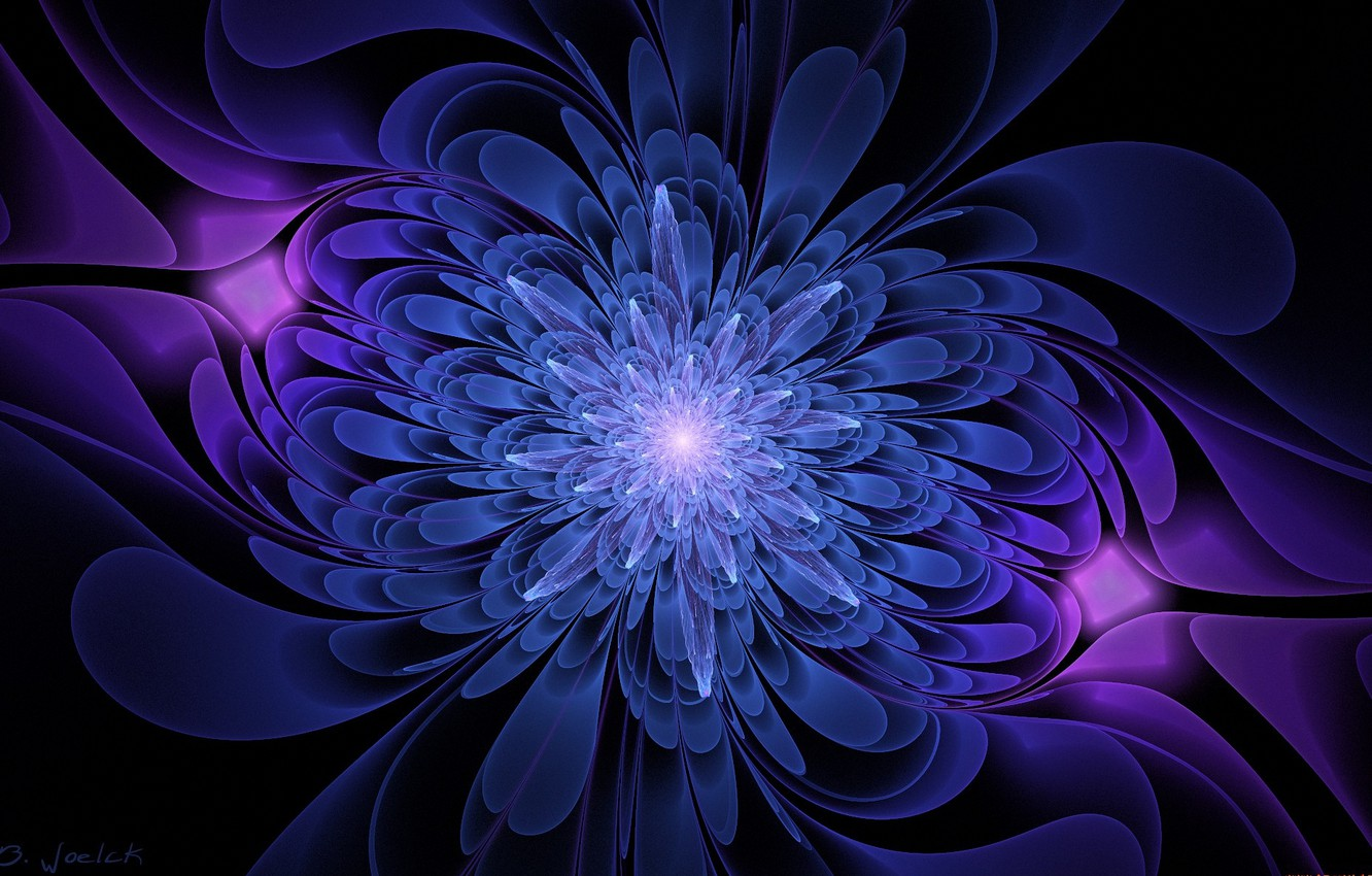 Photo wallpaper flower, graphics, black background, blue and purple color
