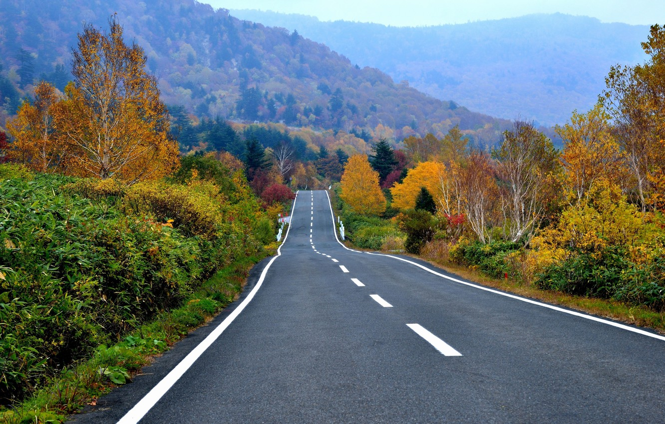 Photo wallpaper road, autumn, forest, trees, mountains, highway