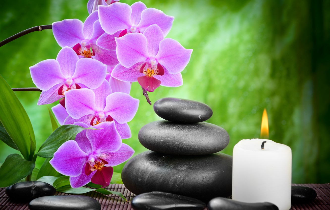 Photo wallpaper flower, stones, candles, bamboo, black, Orchid, flowers,