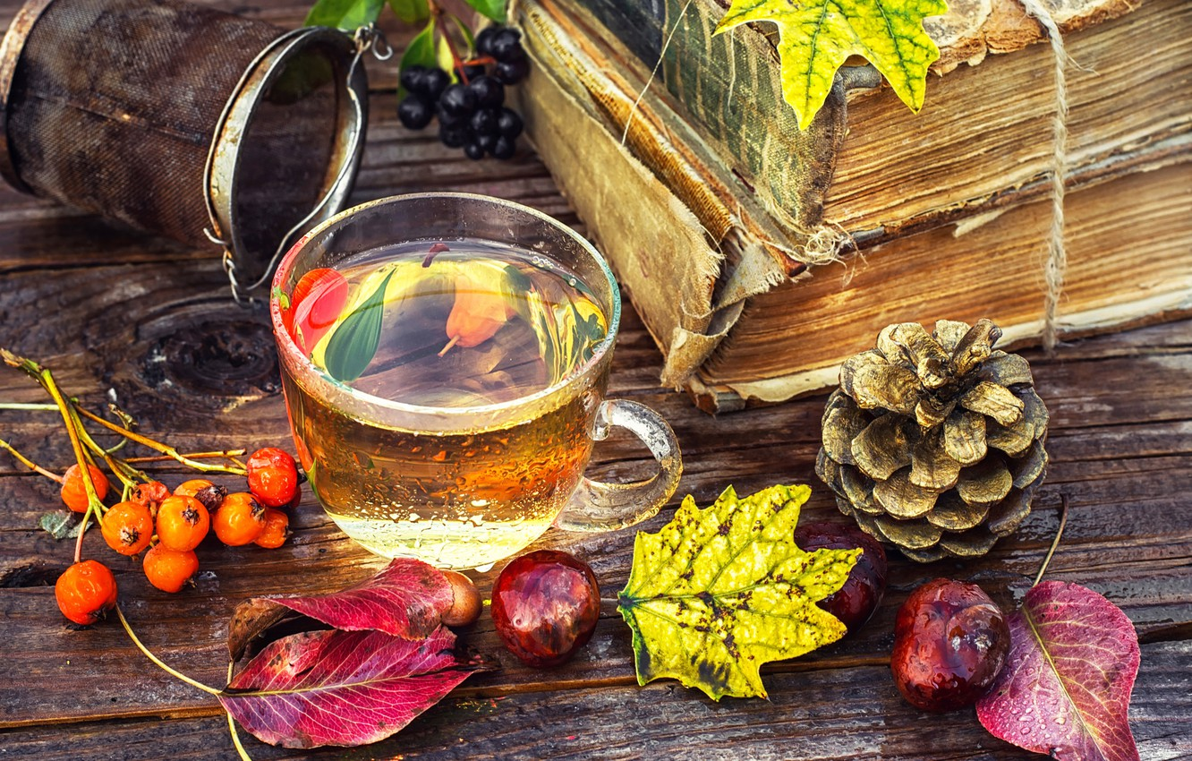 Photo wallpaper leaves, berries, tea, Board, books, Cup, bump, Rowan, chestnuts, strainer