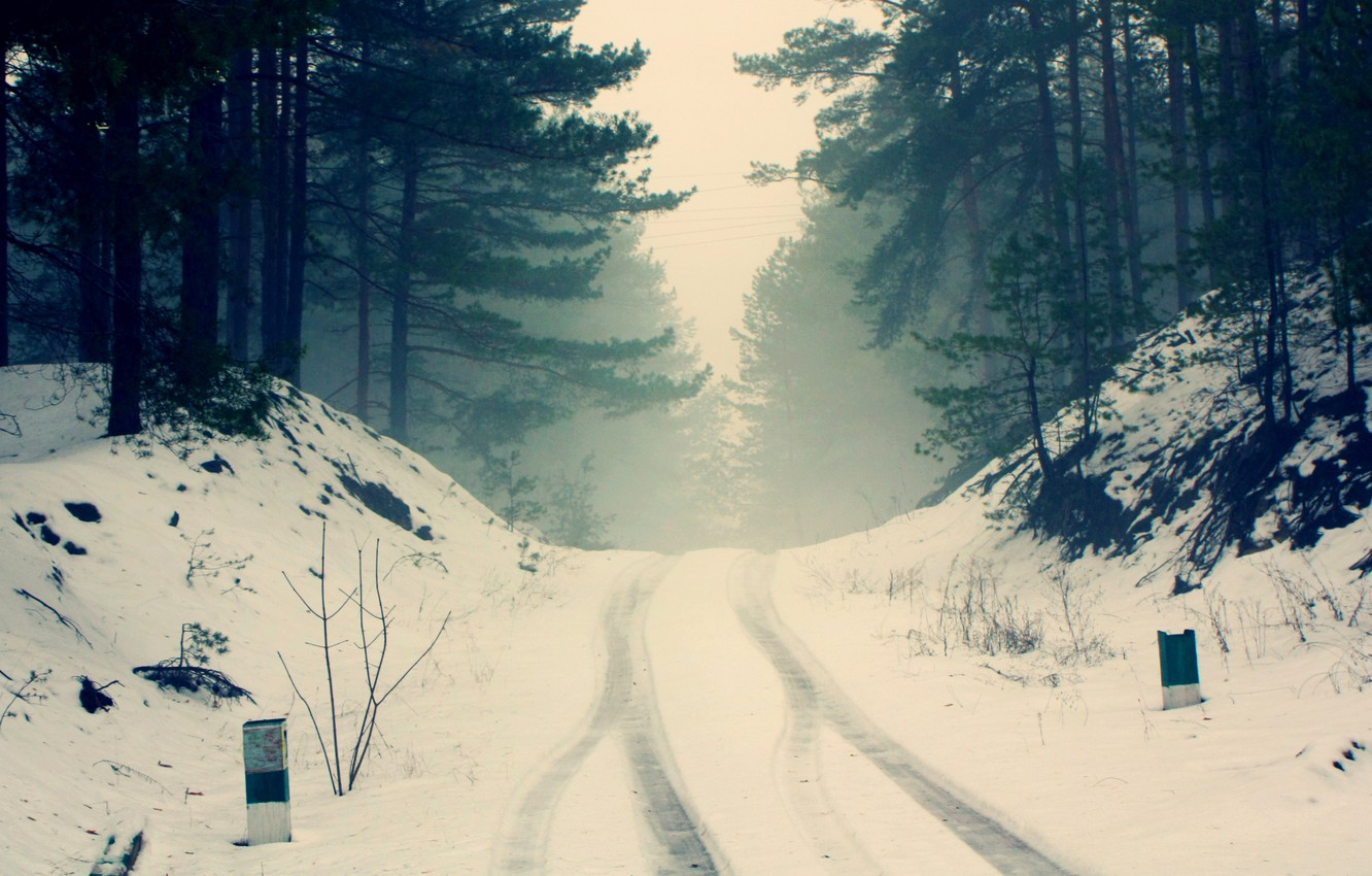 Photo wallpaper winter, road, forest, snow, trees, branches, nature, fog, silence, frost, haze, pine, silhouettes, cold, the ...