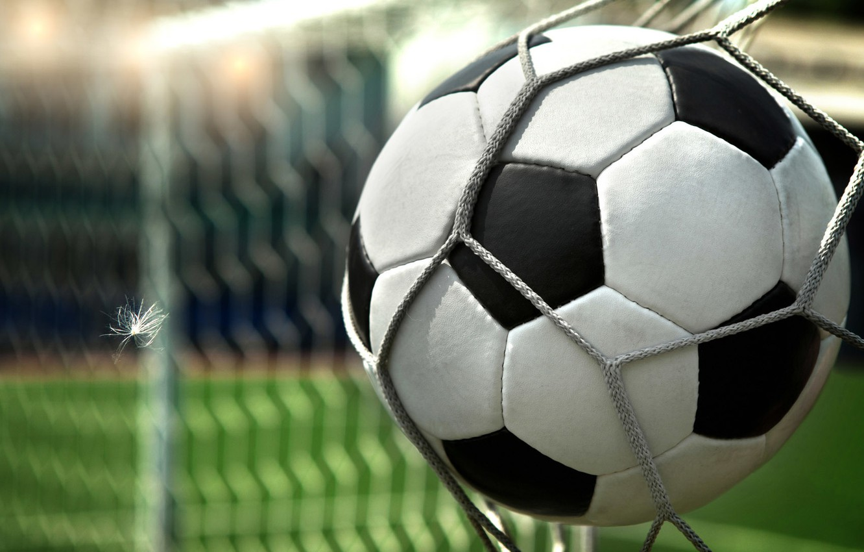 Wallpaper football, gate, The ball, goal images for desktop