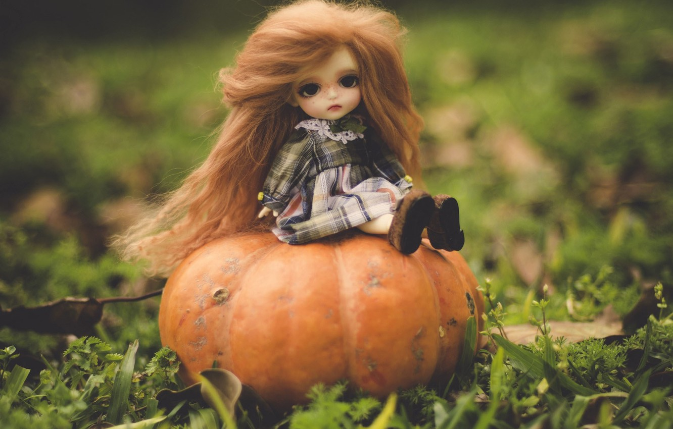 Photo wallpaper nature, toy, doll, pumpkin, red, sitting, long hair