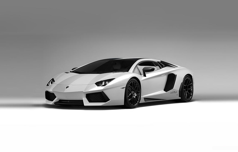 Photo wallpaper white background, lamborghini, cars, auto, wallpapers, supercars, aventador lp700-4