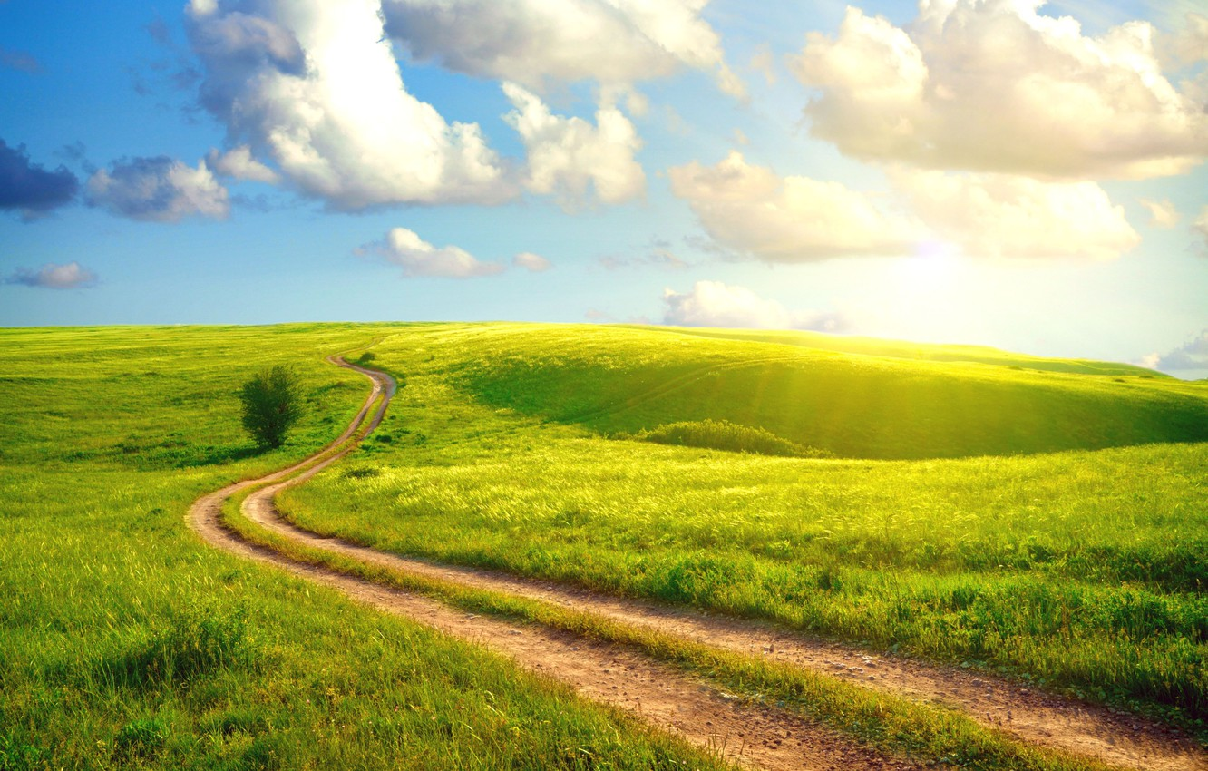 Photo wallpaper road, summer, the sky, grass, the sun, clouds, landscape, country, village, dense, Sunshine day