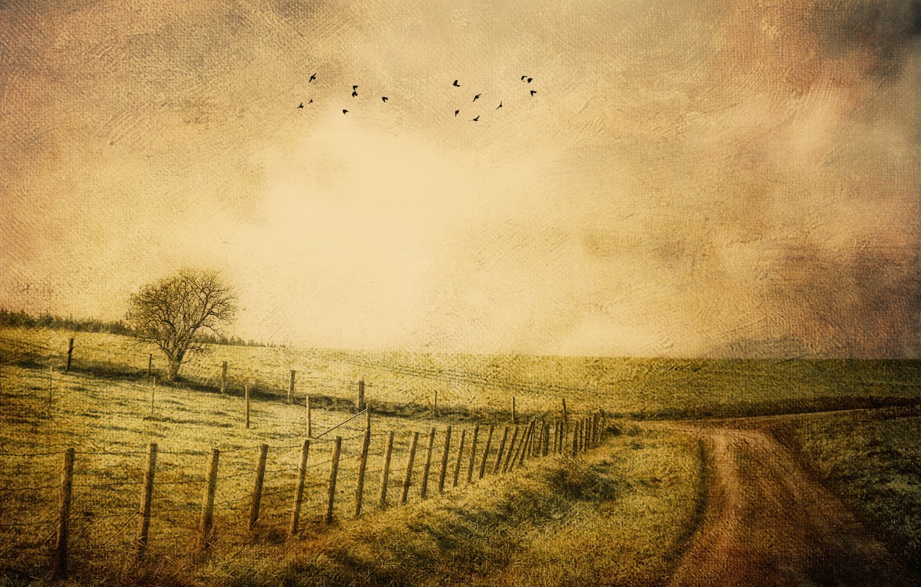 Photo wallpaper road, style, background, the fence