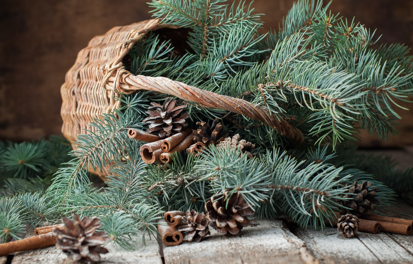 Photo wallpaper branches, basket, tree, New Year, Christmas, bumps