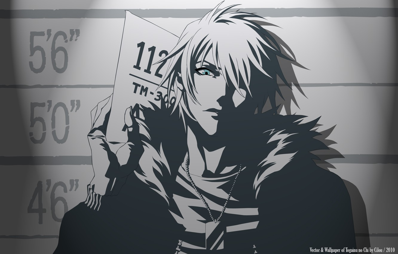 Photo wallpaper anime, The Blood Of The Guilty Dog, Togainu no Chi