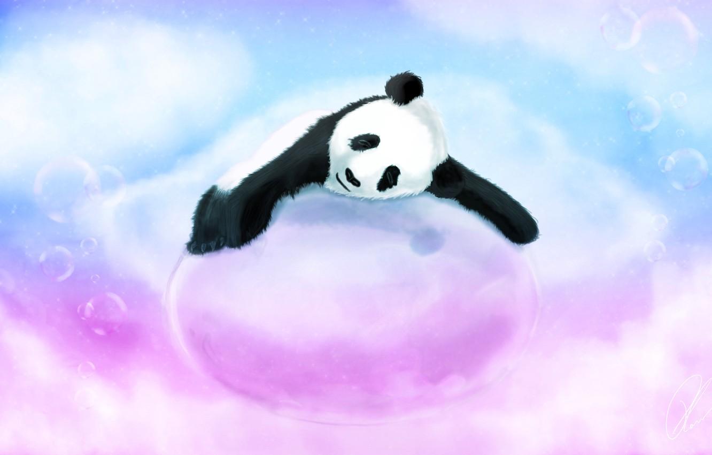 Photo wallpaper bubbles, blue, bear, pink, Panda, sleeping, bubble, lying