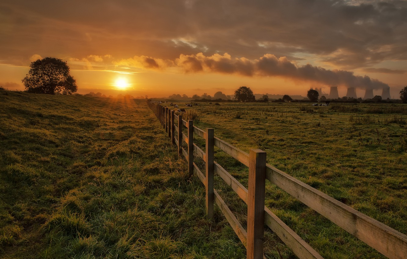 Photo wallpaper the sky, grass, the sun, clouds, trees, sunset, pipe, smoke, the fence, the evening, cows, …