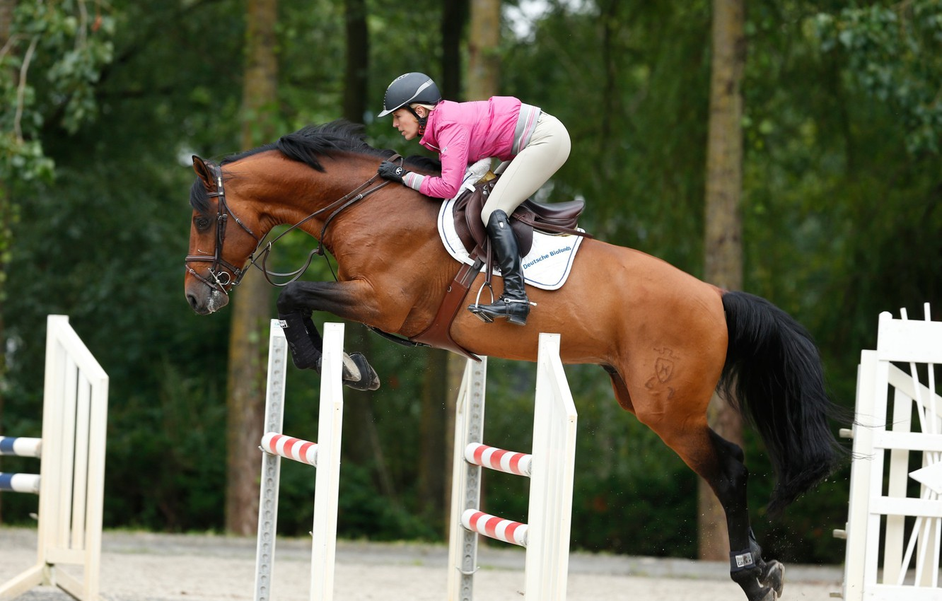 Wallpaper Horse Jump Sport Horse Jumping Horse Show Jumping Equestrian Meredith Michaels Beerbaum Images For Desktop Section Sport Download