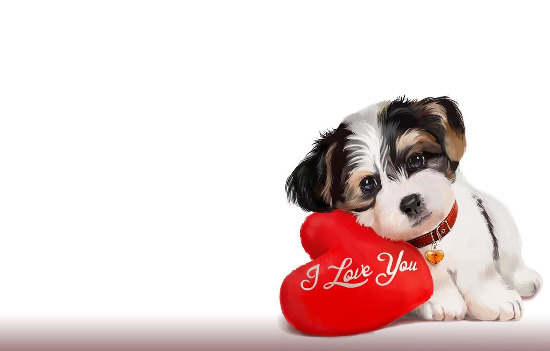 Photo wallpaper mood, art, puppy, pillow, the word, children's, lorri kajenn the