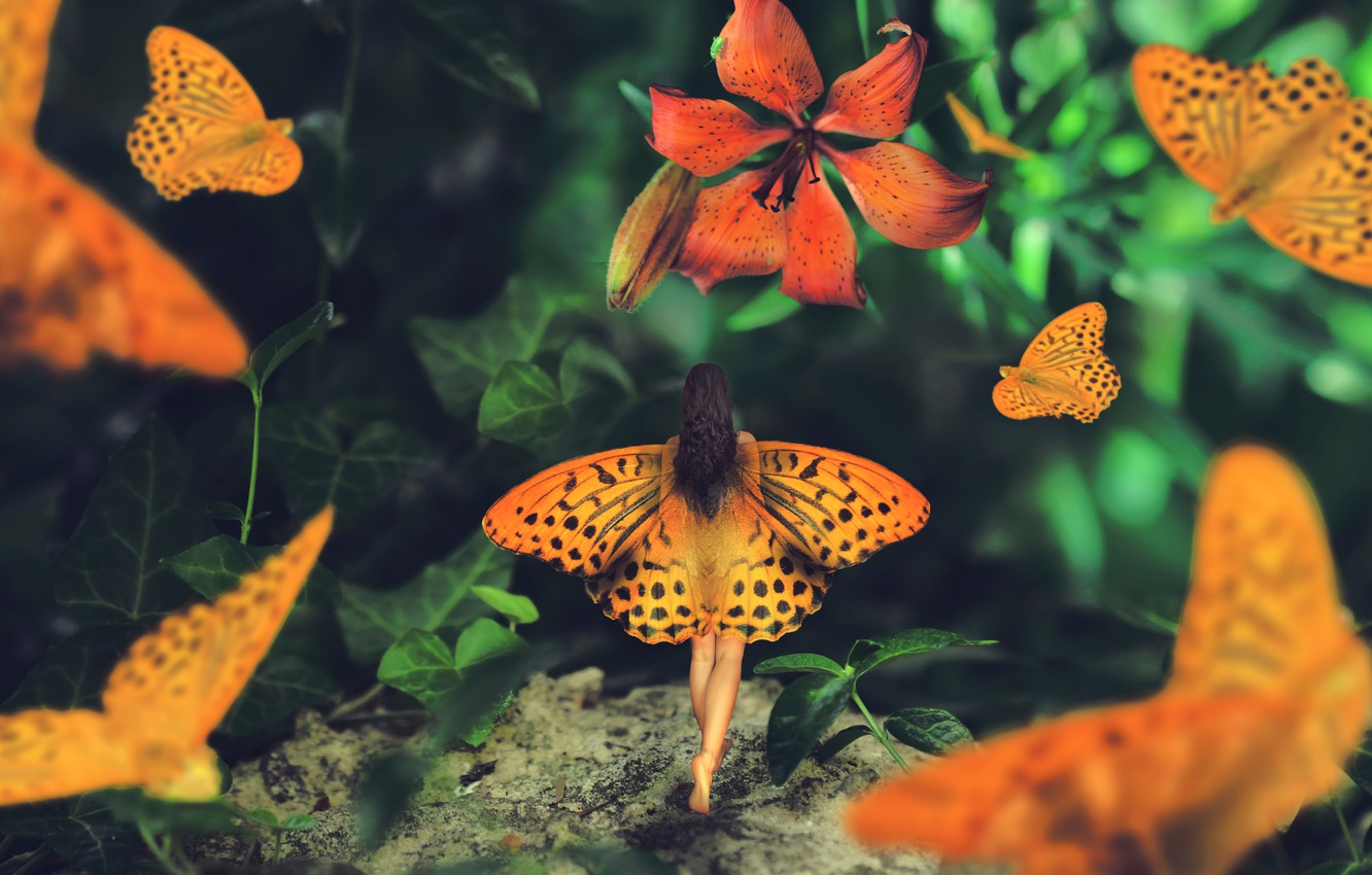 Photo wallpaper girl, butterfly, Lily, wings, Wonderland journey, Maria Mazuch