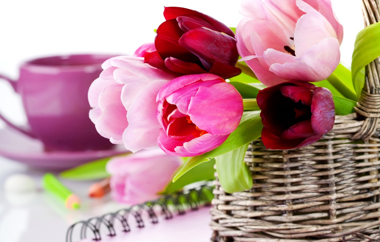 Photo wallpaper photo, Flowers, Tulips, Basket, Closeup