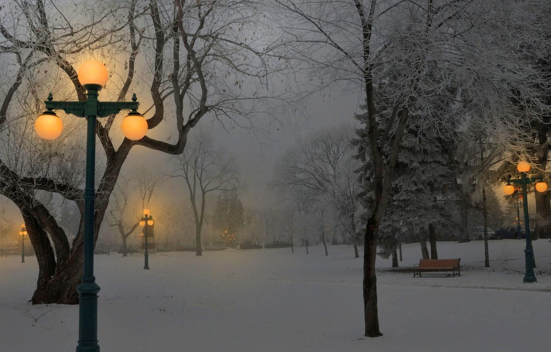 Photo wallpaper light, snow, Park, Winter, lights, benches