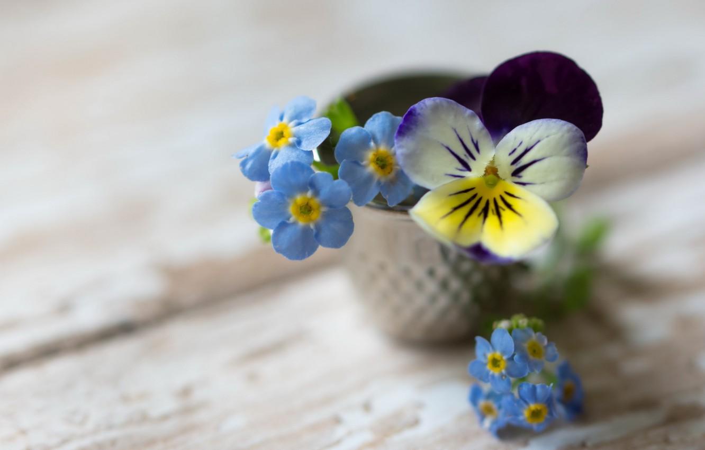 Photo wallpaper flowers, background, bouquet