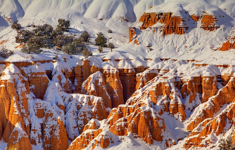 Photo wallpaper winter, snow, trees, rocks, canyon