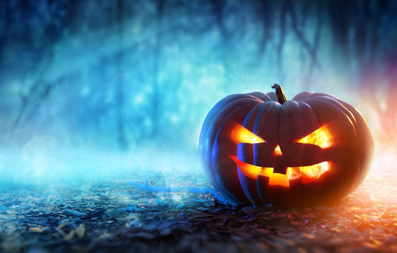 Photo wallpaper halloween, pumpkin, evil face