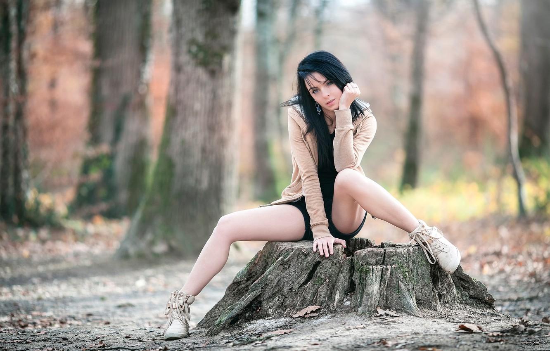 Photo wallpaper legs, Arya, the village, Laurent KC, on the stump